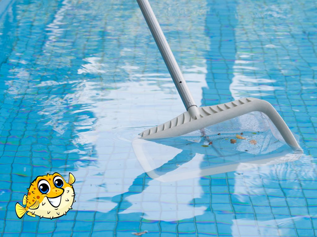 Chilliwack Pool Cleaning Service