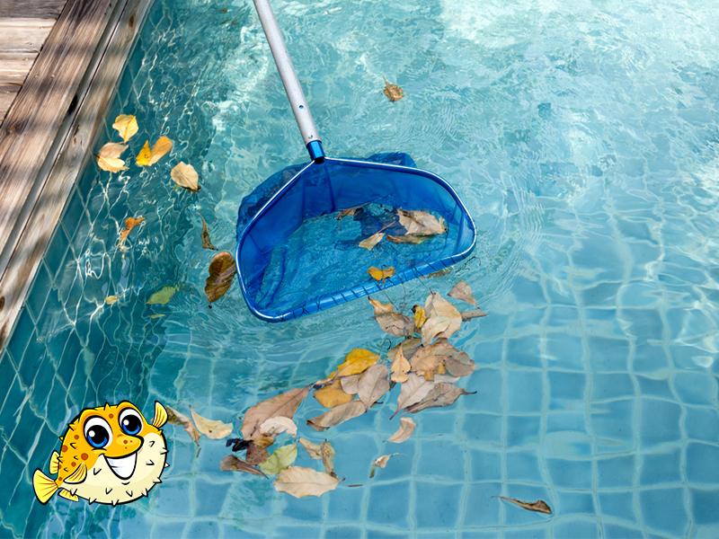 Surrey Seasonal Pool Maintenance