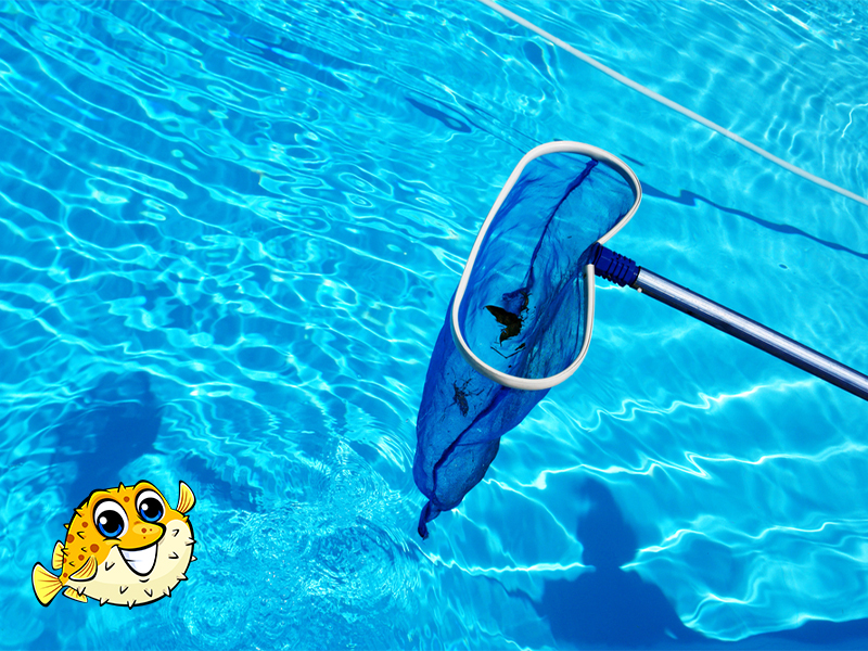 Vancouver Pool Cleaning