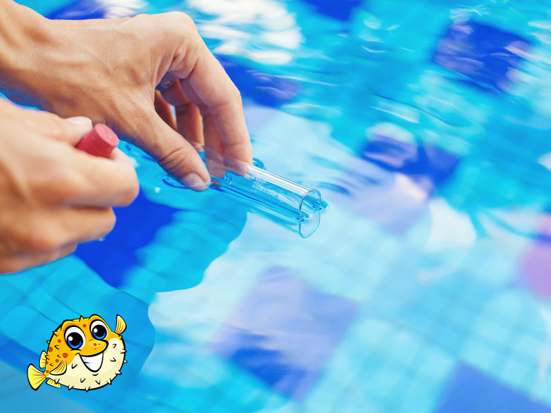 West Vancouver Pool Cleaning